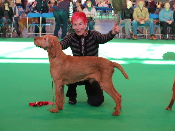 James at Crufts 2014