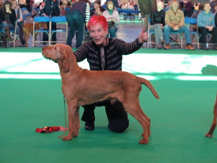James at Crufts